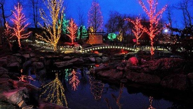 christmas-lights-at-creation-museum