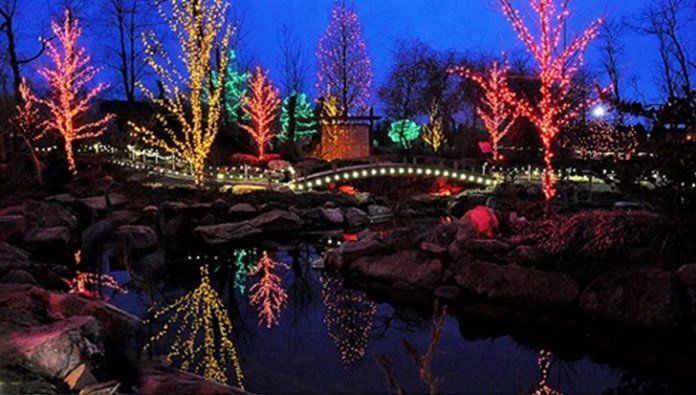 christmas-lights-at-creation-museum
